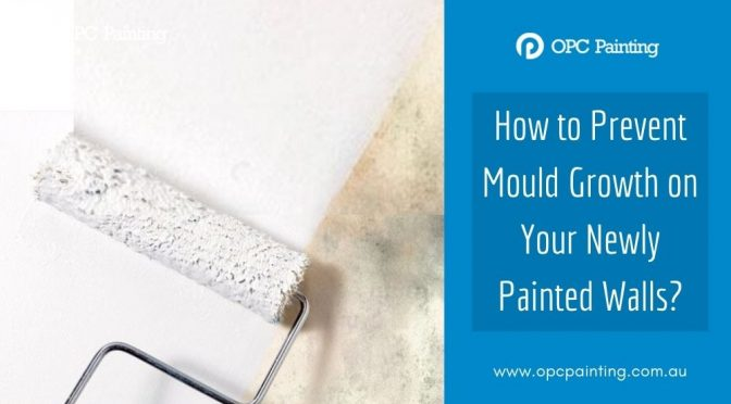 How to Prevent Mould Growth on Your Newly Painted Walls?